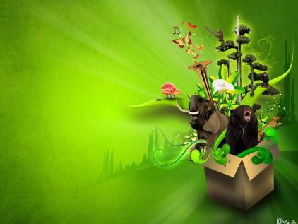 green-wallpaper-for-music_422_23312